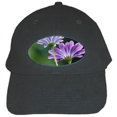 Flower Black Baseball Cap by Siebenhuehner
