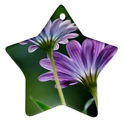 Flower Star Ornament