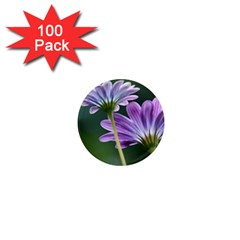Flower 1  Mini Button Magnet (100 Pack) by Siebenhuehner