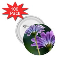 Flower 1 75  Button (100 Pack) by Siebenhuehner