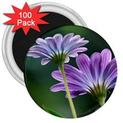 Flower 3  Button Magnet (100 Pack) by Siebenhuehner