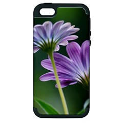 Flower Apple Iphone 5 Hardshell Case (pc+silicone) by Siebenhuehner