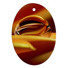 Waterdrop Oval Ornament (two Sides) by Siebenhuehner