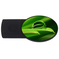Waterdrop 2gb Usb Flash Drive (oval)