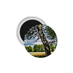 Trees 1 75  Button Magnet by Siebenhuehner