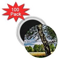 Trees 1 75  Button Magnet (100 Pack) by Siebenhuehner