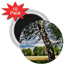 Trees 2 25  Button Magnet (10 Pack) by Siebenhuehner