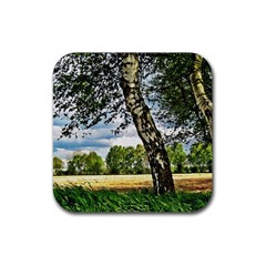 Trees Drink Coaster (square) by Siebenhuehner