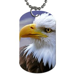 Bald Eagle Dog Tag (two Sided)  by Siebenhuehner
