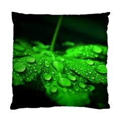Waterdrops Cushion Case (two Sided)  by Siebenhuehner