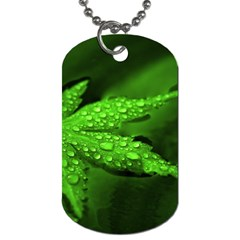 Leaf With Drops Dog Tag (two Sided)  by Siebenhuehner