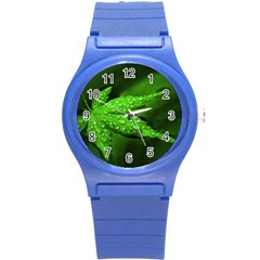Leaf With Drops Plastic Sport Watch (small) by Siebenhuehner