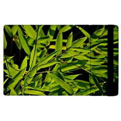 Bamboo Apple Ipad 2 Flip Case by Siebenhuehner