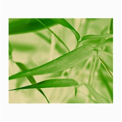 Bamboo Glasses Cloth (small, Two Sided) by Siebenhuehner
