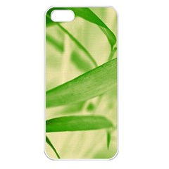 Bamboo Apple Iphone 5 Seamless Case (white)