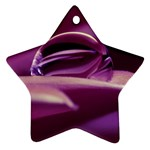 Waterdrop Star Ornament Front