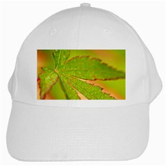Leaf White Baseball Cap