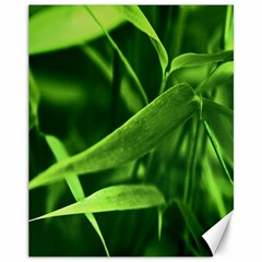 Bamboo Canvas 11  X 14  (unframed) by Siebenhuehner