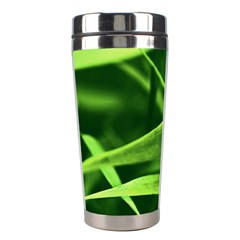 Bamboo Stainless Steel Travel Tumbler by Siebenhuehner