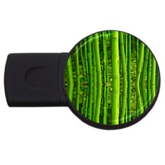 Bamboo 4gb Usb Flash Drive (round)