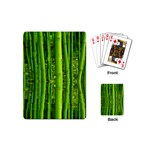 Bamboo Playing Cards (Mini) Back