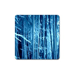 Blue Bamboo Magnet (square) by Siebenhuehner