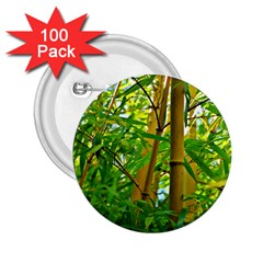 Bamboo 2 25  Button (100 Pack) by Siebenhuehner