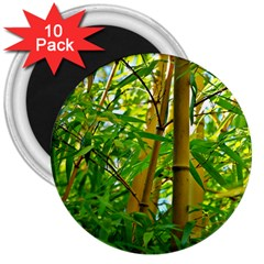 Bamboo 3  Button Magnet (10 Pack) by Siebenhuehner