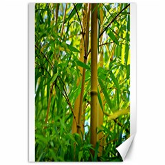 Bamboo Canvas 20  X 30  (unframed) by Siebenhuehner