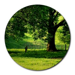 Trees 8  Mouse Pad (round) by Siebenhuehner