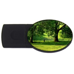 Trees 2gb Usb Flash Drive (oval) by Siebenhuehner