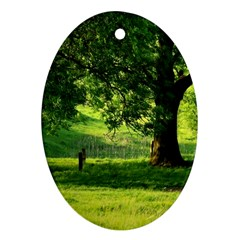Trees Oval Ornament (two Sides) by Siebenhuehner