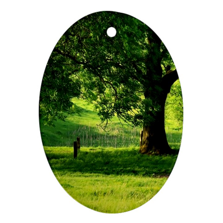 Trees Oval Ornament (Two Sides)