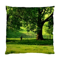 Trees Cushion Case (two Sided)  by Siebenhuehner