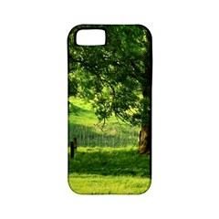 Trees Apple Iphone 5 Classic Hardshell Case (pc+silicone) by Siebenhuehner