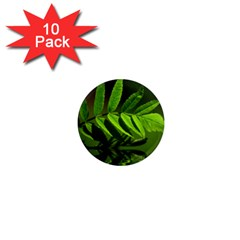 Leaf 1  Mini Button Magnet (10 Pack) by Siebenhuehner