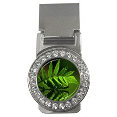 Leaf Money Clip (cz) by Siebenhuehner