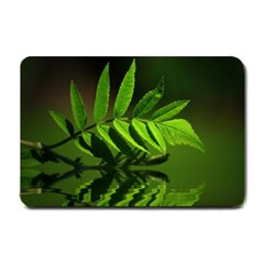 Leaf Small Door Mat by Siebenhuehner