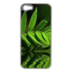 Leaf Apple Iphone 5 Case (silver) by Siebenhuehner