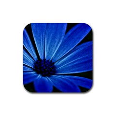 Flower Drink Coaster (square) by Siebenhuehner