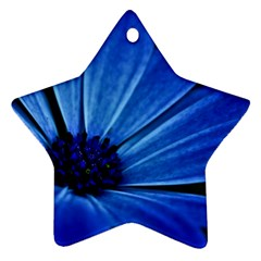 Flower Star Ornament (two Sides) by Siebenhuehner