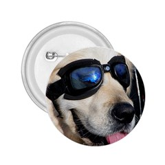 Cool Dog  2 25  Button