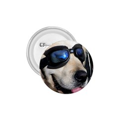 Cool Dog  1 75  Button