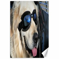 Cool Dog  Canvas 20  X 30  (unframed)