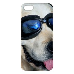 Cool Dog  Iphone 5s Premium Hardshell Case