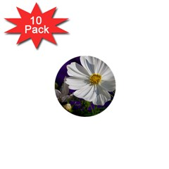 Cosmea   1  Mini Button (10 Pack)