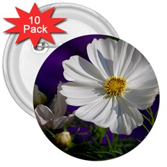 Cosmea   3  Button (10 Pack) by Siebenhuehner