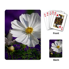 Cosmea   Playing Cards Single Design