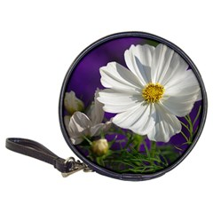 Cosmea   Cd Wallet by Siebenhuehner