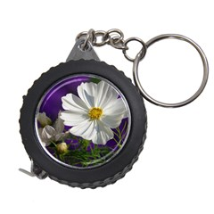 Cosmea   Measuring Tape